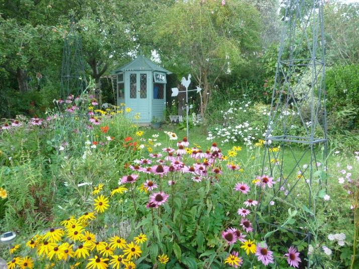 Our garden  :)