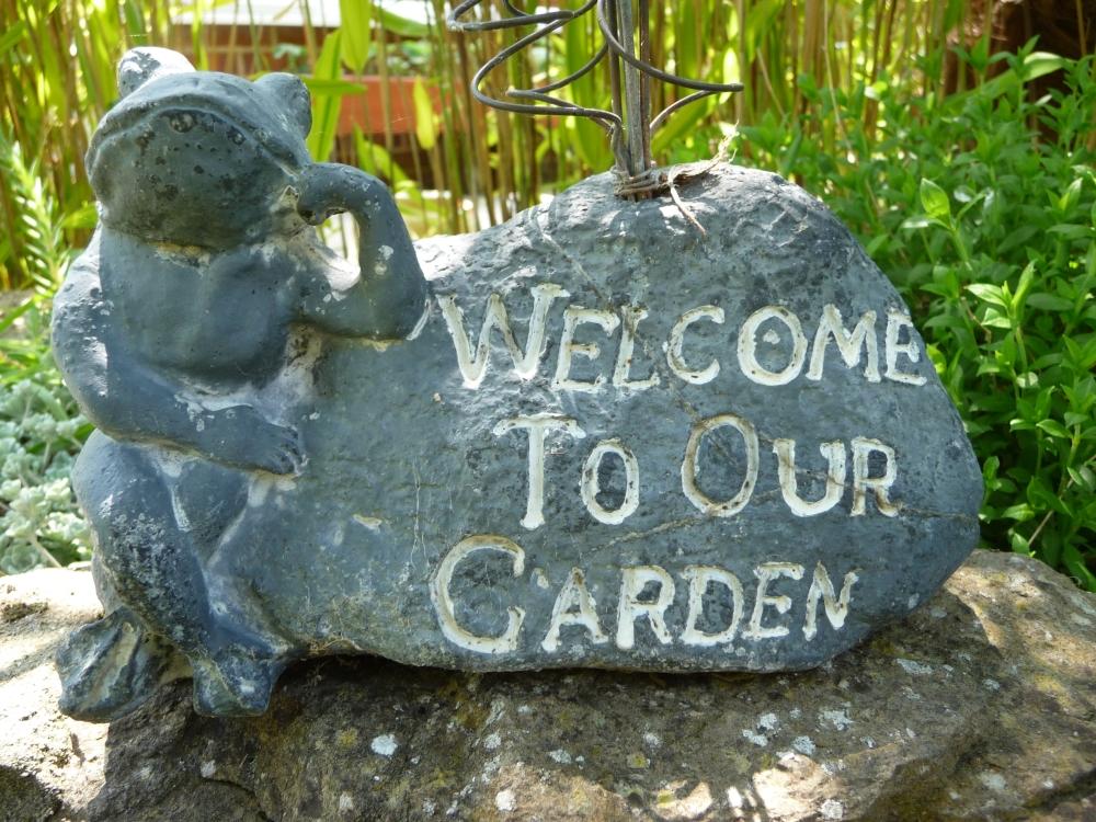 Our garden year (1/6)