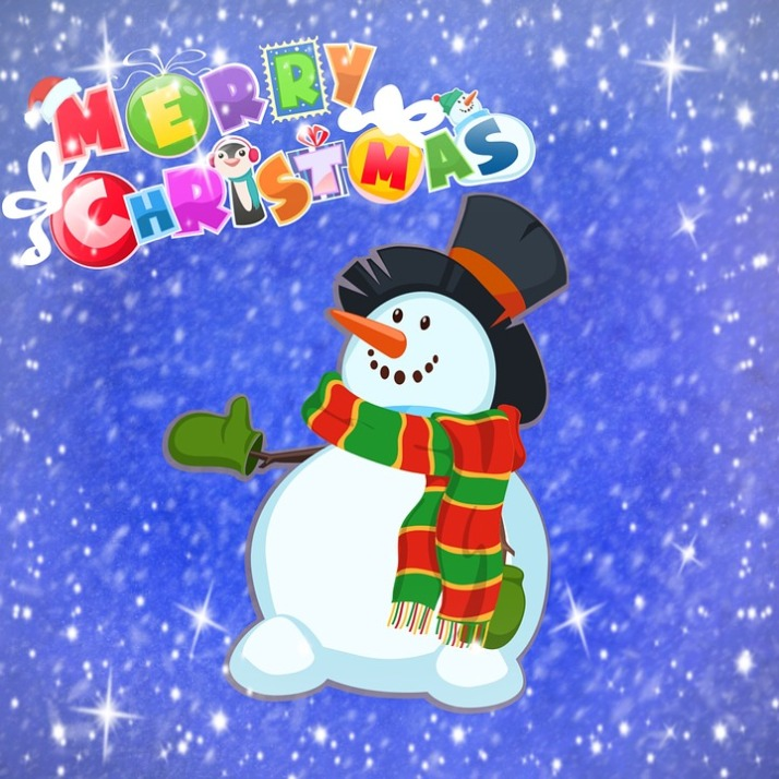 merry-christmas-1084796_960_720